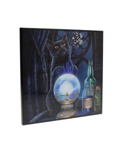Witches Apprentice Small Crystal Clear Picture25cm