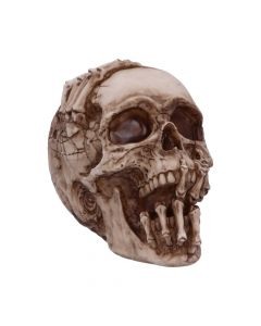Breaking Out Skull (JR) 20cm Skulls Popular Products - Dark Artist Collections