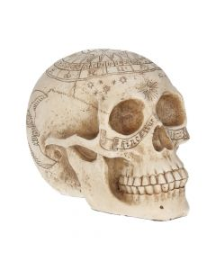 Astrological Skull 20cm