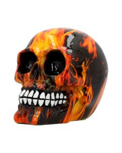 Inferno (Medium) 11cm (Pack of 6)