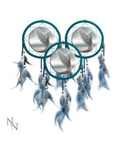 Dreamcatcher  AS Spirit Guide (Pack of 3)15cm