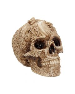 Cranial Drakos Engraved Dragon Skull Ornament 19.5cm Skulls