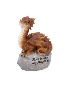 Home Is Where My Dragon Is 19.5cm