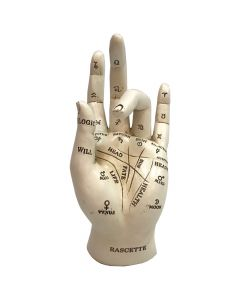 Palmistry 17.7cm Unspecified Stocking Fillers Value Range