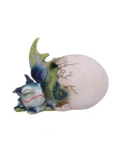 Hatchling's Rest 12cm Dragons New in Stock Value Range