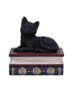 Salems Spells 11.7cm Cats New in Stock Value Range