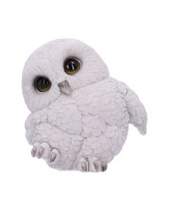 Feathers 12.5cm Owls Coming Soon Value Range