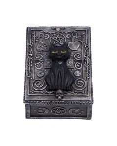 Familiar Spell Box 13.7cm Cats New in Stock Value Range
