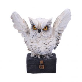 Archimedes 12.5cm