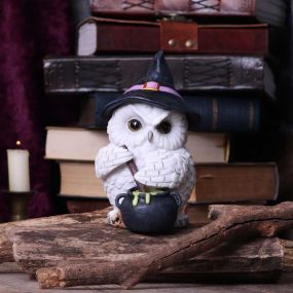 Owl Potion 17.5cm